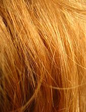 Redhead_close_up